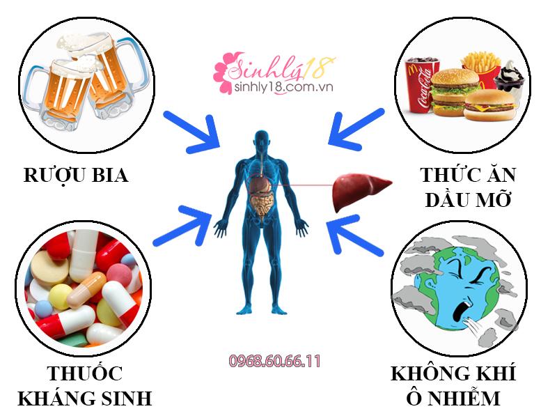 Những nguyên nhân gây ra các bệnh về gan